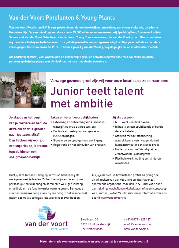 junior teelt talent